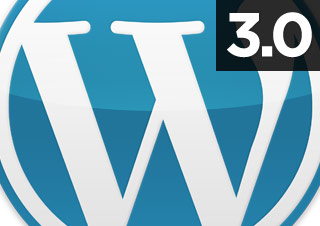 Exploring WordPress 3.0 and development issues raise questions about this important version update